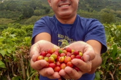 blog-bestravel-costa-rica-fruta