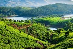 blog-india-bestravel-natureza